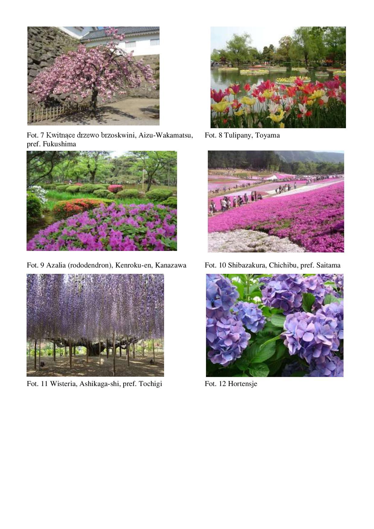 1. Dzien rownonocy wiosennej-page-003